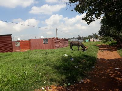 Vacant Land for Sale in Evaton Small Farms, Evaton - Gauteng